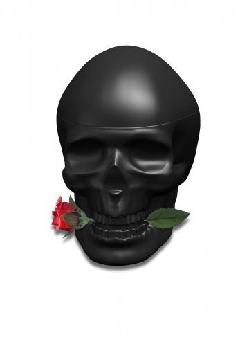 ED HARDY SKULLS & ROSES TESTER 2.5 EAU DE TOILETTE SPRAY FOR MEN